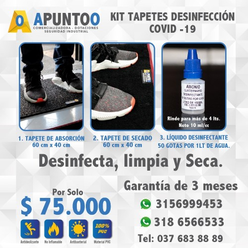 KIT TAPETE DESINFECTANTE